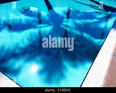 Palmiers et de refléter dans la piscine bleu turquoise clair Banque D'Images