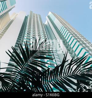 Jusqu'à vers un bâtiment résidentiel à Singapour, entouré de verdure. Projet résidentiel par HDB, nommé Whampoa Banque D'Images