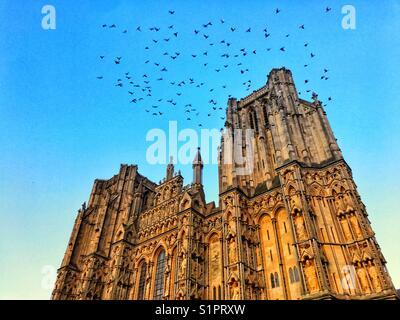 La cathédrale de Wells, Somerset