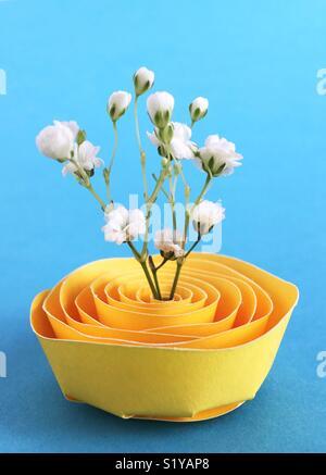 Gypsophile fleurs dans un stand de papier. Banque D'Images