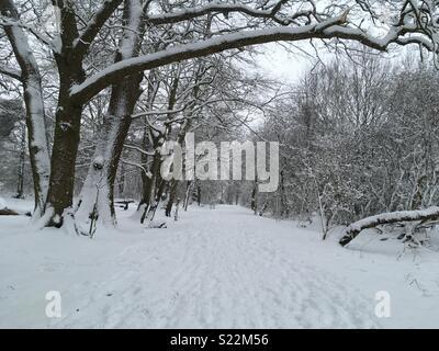 Jours de neige