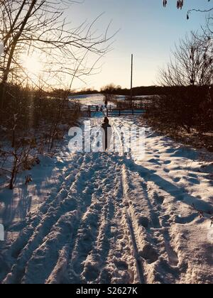 L'exécution dans la neige