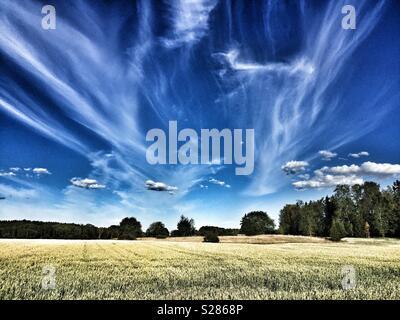 Voir de champs agricoles à Husby-Ärlinghundra l'église, à l'extérieur de l'Arlanda, Sigtuna, Stockholm en Suède. Soleil, ciel bleu et nuages blancs. Banque D'Images