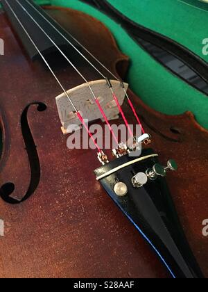 Close up of Violin strings et pont Banque D'Images