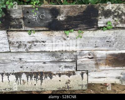 Planche de bois at beach Banque D'Images