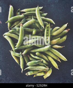 La récolte fraîche de petits pois dans une cosse sur un comptoir de cuisine sombre Banque D'Images