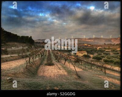 Une vue sur le lever du soleil d'hiver d'amandiers et d'une ferme, Catalogne, Espagne. Banque D'Images