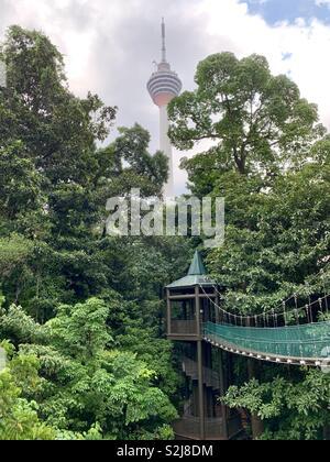 La Malaisie Kuala Lumpur Rainforest Canopy Walkway Au Dessus Des