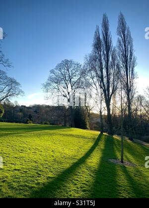 Au coucher du soleil janvier jardins Horniman à forest hill avec de longues ombres Banque D'Images