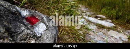Sentier de randonnée pédestre marque signe peint sur un rocher. Chemin menant à travers la belle forêt de Bohême, parc national. Bannière concept trekking. Banque D'Images