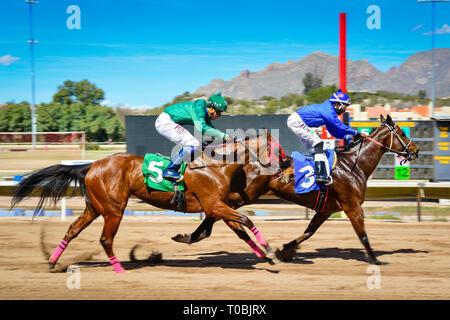 Vue de la dernière ligne droite pour deux chevaux de course à la ligne d'arrivée à la Rillito Park Race Track à Tucson, AZ