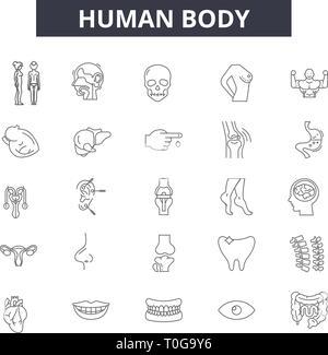 Icônes de ligne du corps humain pour le web et mobile. Signes d'avc modifiable. Corps humain résumé du concept illustrations Banque D'Images