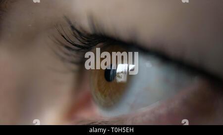 Oeil d'une femme Vue de côté, reflet d'une fenêtre, les yeux bruns, l'analyse macro