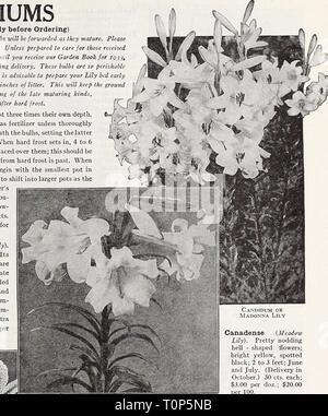 Catalogue automne 1932 l'Dreer (1932) Dreer catalogue automne 1932 l'dreersautumncata1932henr Année: 1932 (à lire attentivement avant de passer commande) AVIS SPÉCIAL. Des bulbes de nénuphar sera transmis à mesure qu'elles arrivent à maturité. Veuillez noter l'heure de livraison pour chaque variété. À moins disposé à prendre soin des personnes reçues en décembre, veuillez vous reporter la commande jusqu'à la réception de notre jardin Livre pour 193j, dans lequel ceux-ci seront offerts pour la livraison du printemps. Ces ampoules sont périssables afin que nous ne pouvons pas accepter leur retour. Il est conseillé de préparer votre lit Lily au début de l'automne et couvrir avec 3 ou 4 pouces de litière. Il s'kee