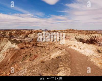Blue Mesa Trail. Petrified Forest National Park, Arizona. Banque D'Images
