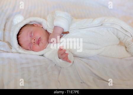 Bébé de trois semaines. Autorisation modèle disponible Banque D'Images