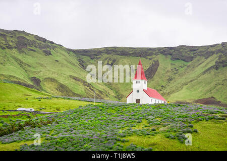 Vue paysage de montagne vert par jour nuageux southern ring road ou cercle d'or et rouge à l'église de toit ville village Vik avec lupin fleurs dans summ Banque D'Images