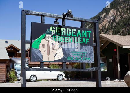 Le sergent vert feuille Cannabis Store, George Town, Colorado, USA Banque D'Images