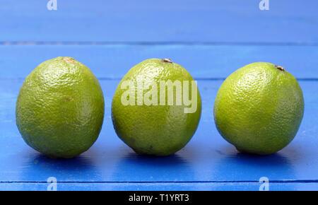 Citrons verts en studio Banque D'Images