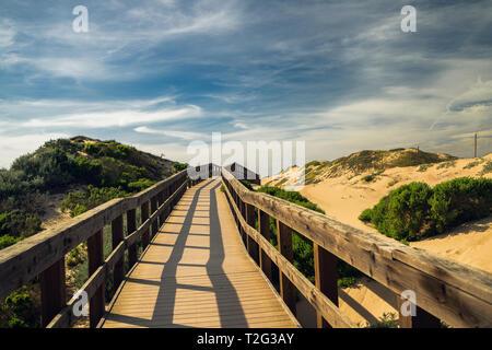 Bois rustique Beach Boardwalk à travers les dunes de sable. Oso Flaco Lake State Park, Californie Zone Banque D'Images