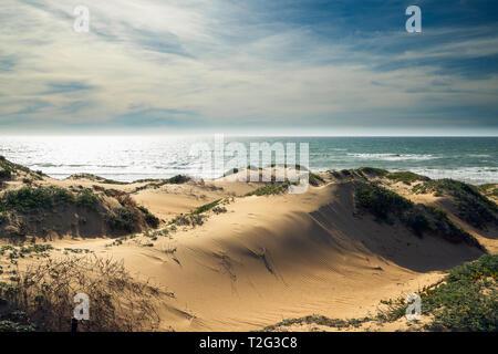 Dunes de sable et vue sur l'océan. Oso Flaco Lake State Park, Californie Zone Banque D'Images