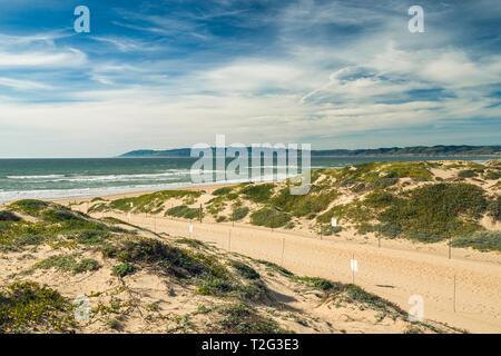 Sentier à travers les dunes de sable et vue sur l'océan. Oso Flaco Lake State Park, Californie Zone Banque D'Images