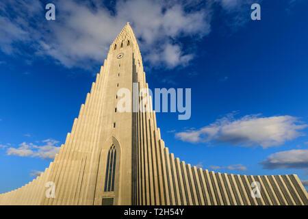 L'église Hallgrimskirkja à Reykjavik, Islande, Europe Banque D'Images