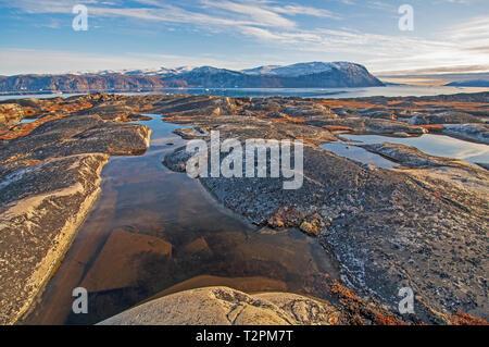 La roche stérile et les étangs de toundra de l'Arctique près de Equip Sermia au Groenland Banque D'Images