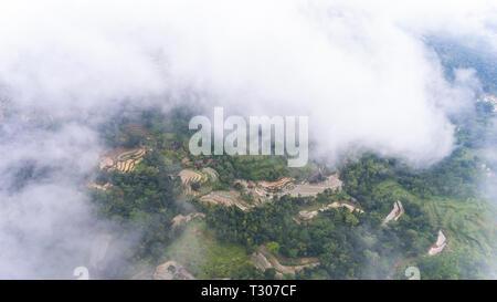 Un aperçu de la culture du riz et de parcelles de forêt de haute altitude. Près de Nglanggeran mountain Banque D'Images