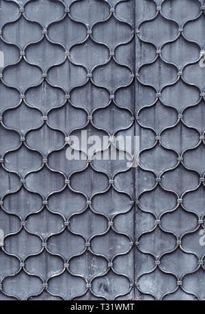 Schéma des Galapagos forgé tige métallique sur tôle d'acier. La texture de la porte
