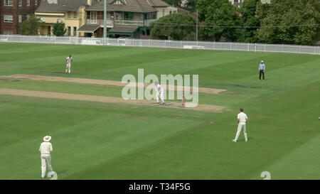 SYDNEY, AUSTRALIE - janvier 31, 2016 sydney cricket grade: Banque D'Images