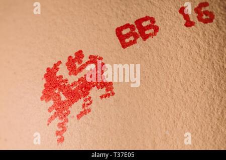 Close up de la marque Lion sur un oeuf Banque D'Images