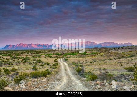 Les montagnes Chiso au lever du soleil, vue de Talley route près de Mariscal Canyon, le parc national Big Bend, Texas, États-Unis Banque D'Images
