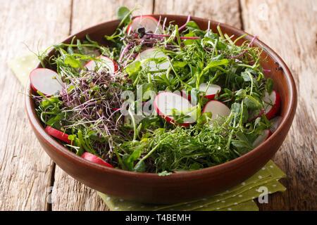 Repas de printemps en bonne santé de radis salade avec vinaigrette au citron vert et de micro close-up dans un bol sur la table horizontale. Banque D'Images