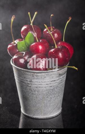 Dans les petites cerises rouges frais seau en métal sur fond noir, Close up, composition verticale - Image Banque D'Images
