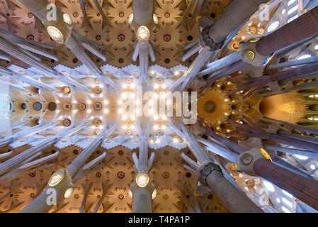 Le plafond de l'intérieur de la Sagrada Familia (église de la Sainte Famille), la cathédrale conçue par Gaudi à Barcelone, Espagne