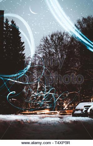 Des sentiers de lumière dans la forêt. Banque D'Images