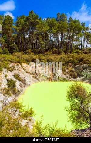 Étang de l'eau, faite par le soufre jaune à Wai-O-Tapu Wonderland géothermique, Rotorua, Nouvelle-Zélande. La verticale Banque D'Images