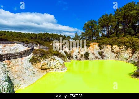 Étang de l'eau, faite par le soufre jaune à Wai-O-Tapu Wonderland géothermique, Rotorua, Nouvelle-Zélande. L'espace de copie pour le texte Banque D'Images