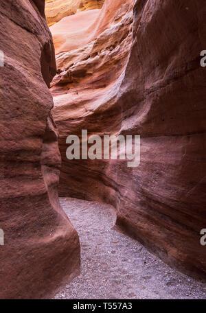Les murs de grès de la partie étroite du red canyon dans le montagnes d'Eilat en Israël près de la frontière du Sinaï Banque D'Images