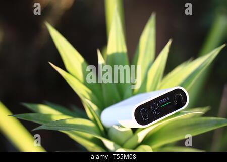 La mesure de la qualité de l'air extérieur. les particules (PM 2.5.2.5) capteur dans un buisson. Une poussière nuisible indiqué détecteur acceptable de qualité de l'air en bonne santé