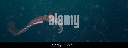 Anomalocaris, créature de la période cambrienne (science 3d illustration bannière)