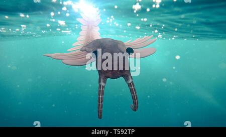 Anomalocaris, créature de la période cambrienne (3d illustration scientifique)