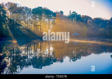 Les rayons du soleil d'or sur le lac Banque D'Images