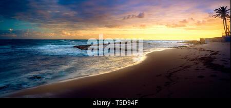 Magnifique coucher de soleil nuages et des palmiers sur la plage de Puerto Rico