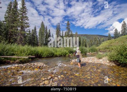 Pêche à la mouche autocollant-Truite Aspen Poêle rivière Roaring Fork Colorado