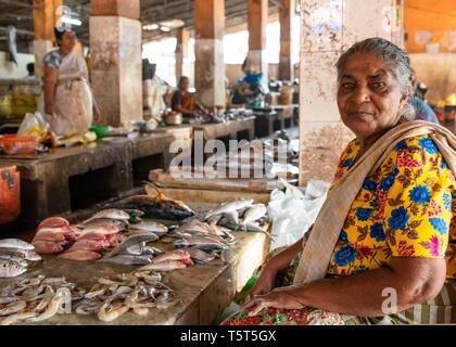 Portrait d'une dame horizontale à la vente du poisson à la criée à Palayam à Trivandrum, Kerala, Inde. Banque D'Images