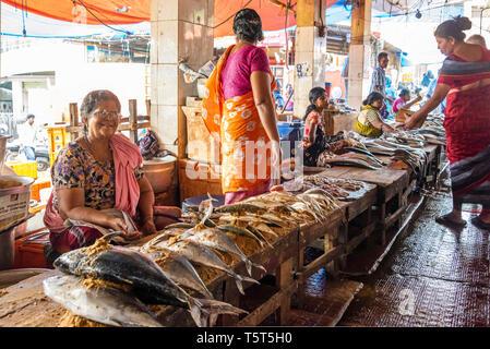 Vue horizontale du marché au poisson à Palayam à Trivandrum, Kerala, Inde. Banque D'Images