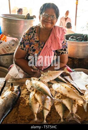Portrait d'une dame verticale à la vente du poisson à la criée à Palayam à Trivandrum, Kerala, Inde. Banque D'Images