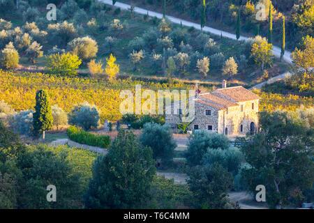 Italie, Toscane, Province de Sienne, Montalcino, mas en pierre entouré de vignes à l'automne Banque D'Images